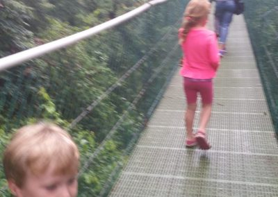 On a hanging bridge in the rain forest